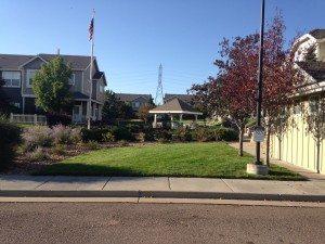 Property Management Denver